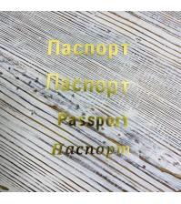 Надпись из термотрансферной пленки Паспорт, цвет золото, SC102020/1