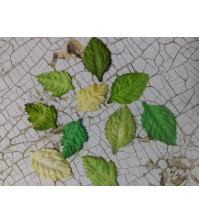 Набор листьев микс, арт. 3041131