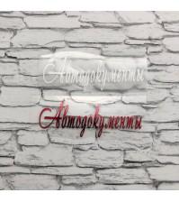 Надпись из термотрансферной пленки Автодокументы, арт.SC502048